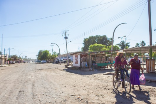 Desertificación. Fotografía: Aldo Santiago