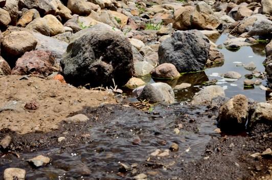 Lo que antes era un río lleno de vida, ahora es sólo un hilo de agua; además se puede ver la espuma por la contaminación.