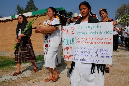 Mujeres que están en defensa del maíz criollo realizan una representación teatral sobre la importancia de los rituales para ofrecer protección del maíz. Fotografía: Santiago Navarro F.