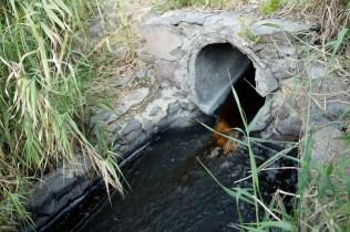 Descarga de Hutsman. A partir de este punto el río deja de tener vida.