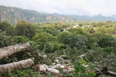 02 Por nuestros cerros y bosques