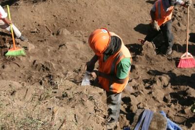 04 Los trabajos de escavación la realizaron trabajadores de la construcción, trabajo que debieron realizar arqueológos especializados