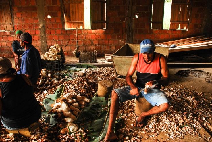 En el trabajo colectivo hay jóvenes y mayores de edad, todos contribuyen y todos se benefician. Fotografía: Santiago Navarro F.