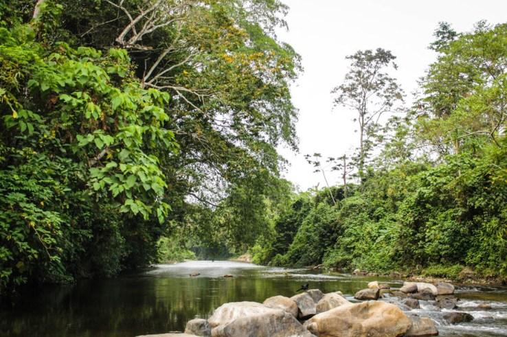 Río de los Milagros, Santa María Chimalapa. Fotografía: Valentina Valle