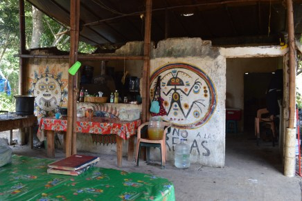 Jalcomulco y cuenca La Antigua: dos años de lucha y resistencia contra las presas