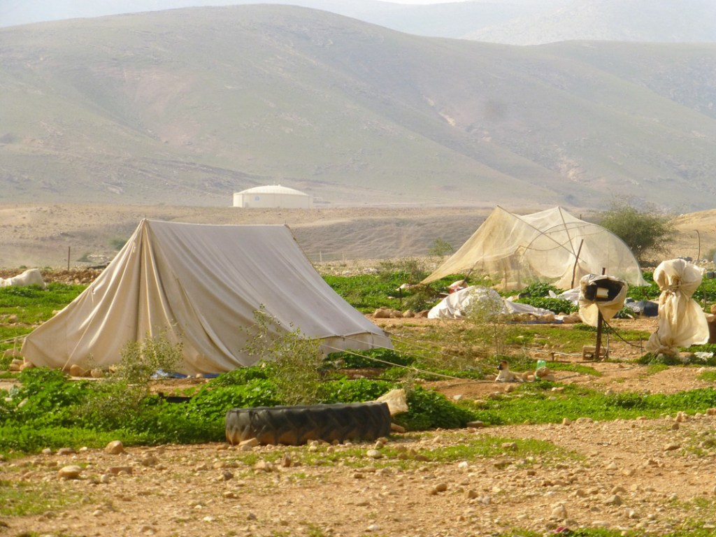 Un pueblo recientemente demolido, en el sur del Valle de Jordan. Se ven las carpas verdes, recién levantadas. Pertenecen a una empresa agrícola israelí. Fotografía: Susana Norman