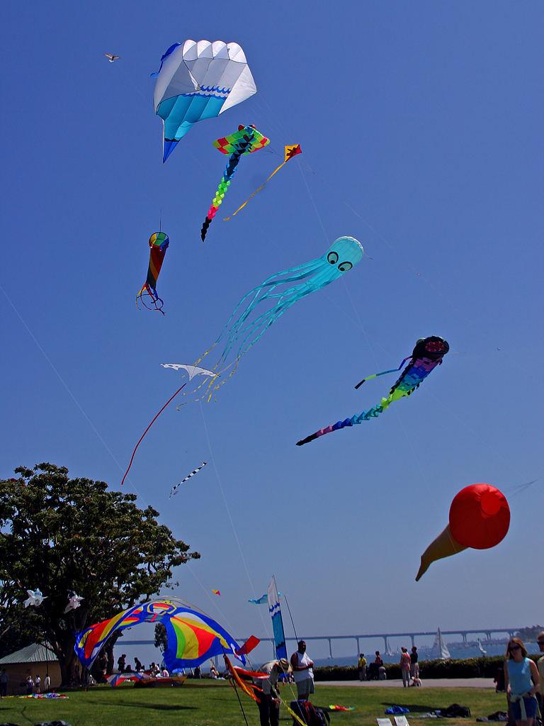 kitesflying