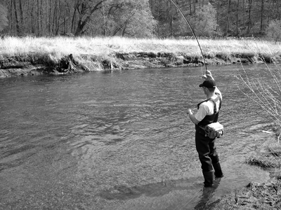 'Change by Design' and 'The Parable of the Fly Fisherman'