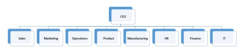 Traditional Organizational Chart
