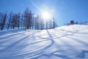 スキー,画像