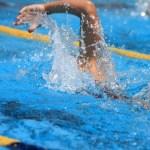 クロールを泳いでいる画像