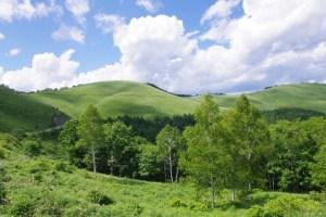 長野の大自然の画像