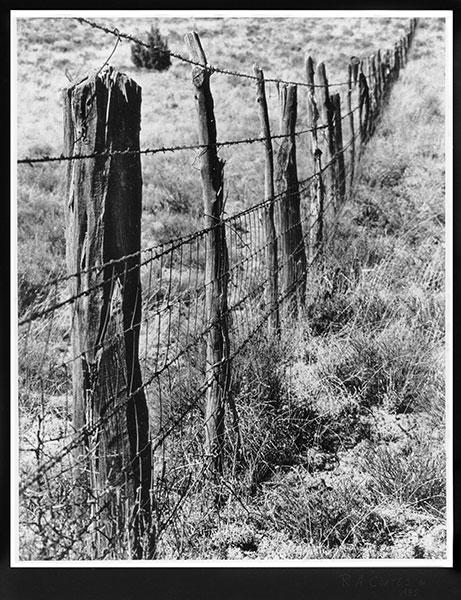Receding fence bw photo