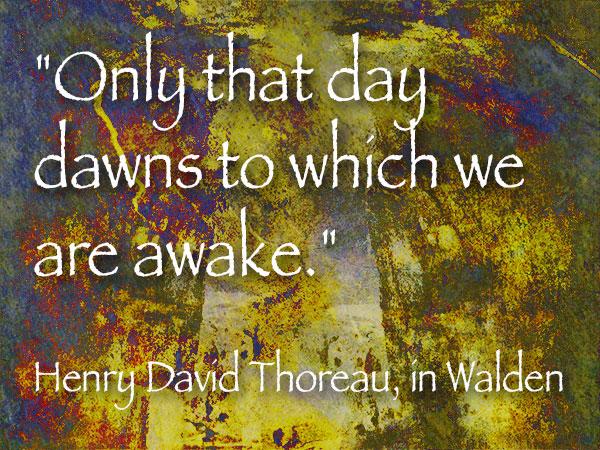 Sunday Photoart Quote Thoreau Successful Photographer