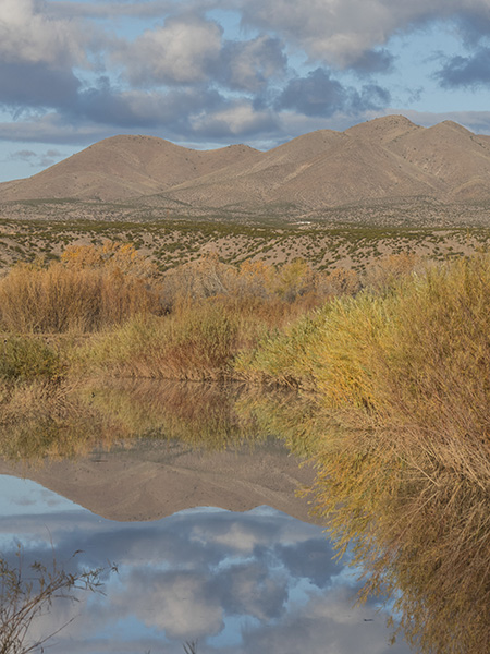 scenic photo bosque del apache