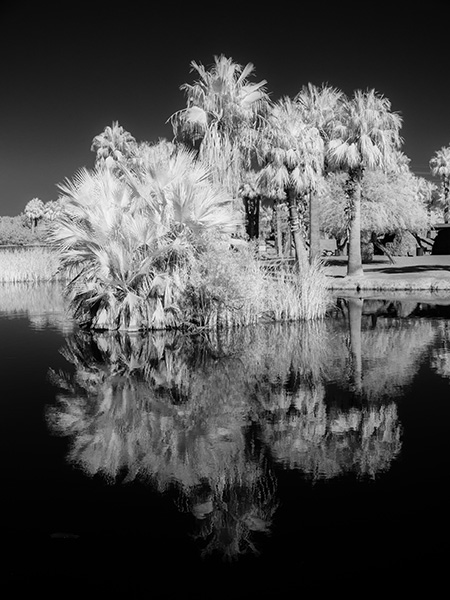 bob coates phot of papago park