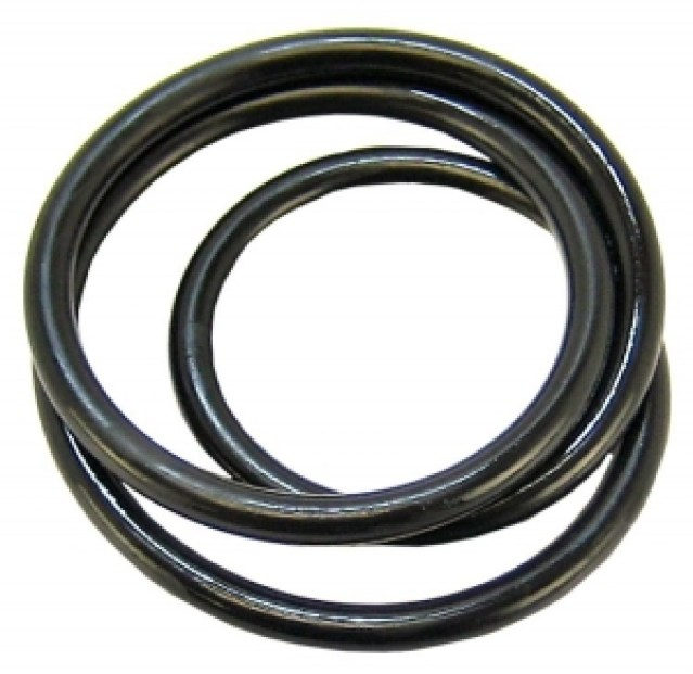 Gasket or sealing ring