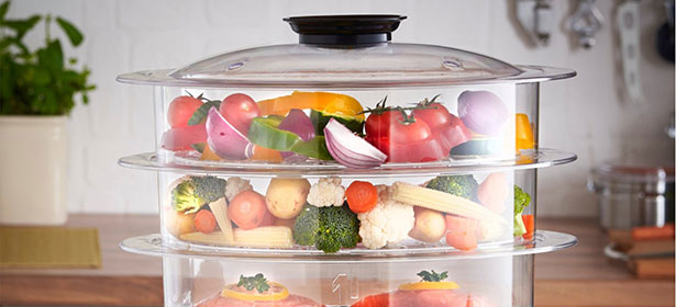 Top Six Best Food Steamer Reviews