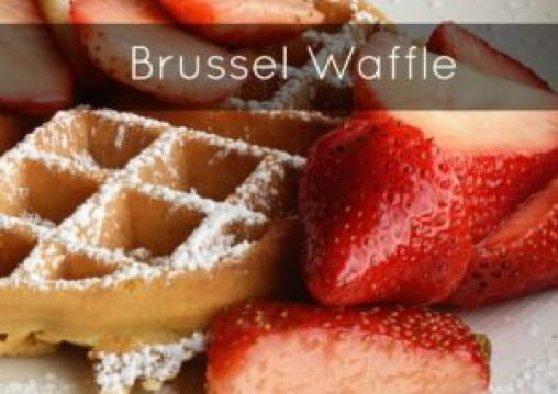 best waffle iron reviews