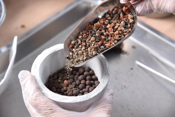 多肉植物專用介質-赤玉土 DSC 72522