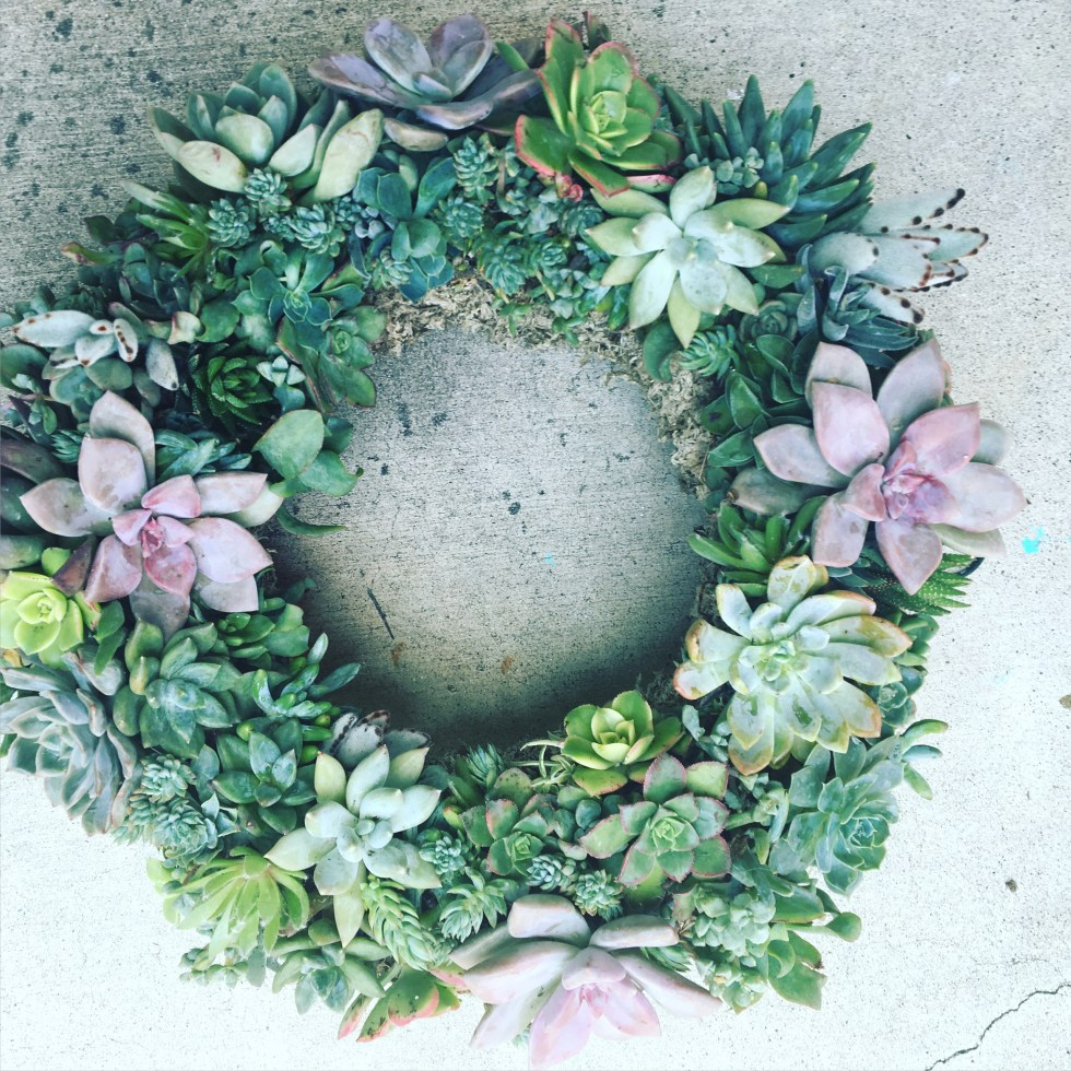 Succulent wreaths can last for months, or years if you know what you're doing.