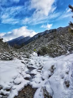 muntii-rodnei-1-decembrie-2016