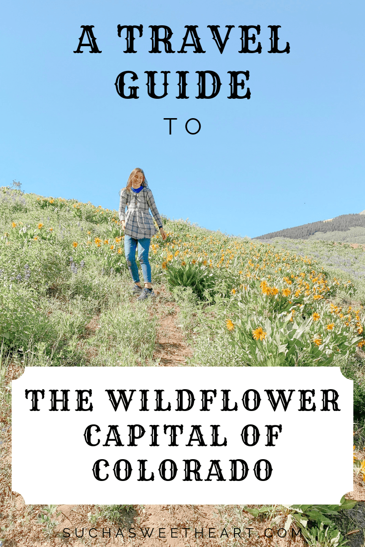 A Travel Guide to the Wildflower Capital of Colorado.