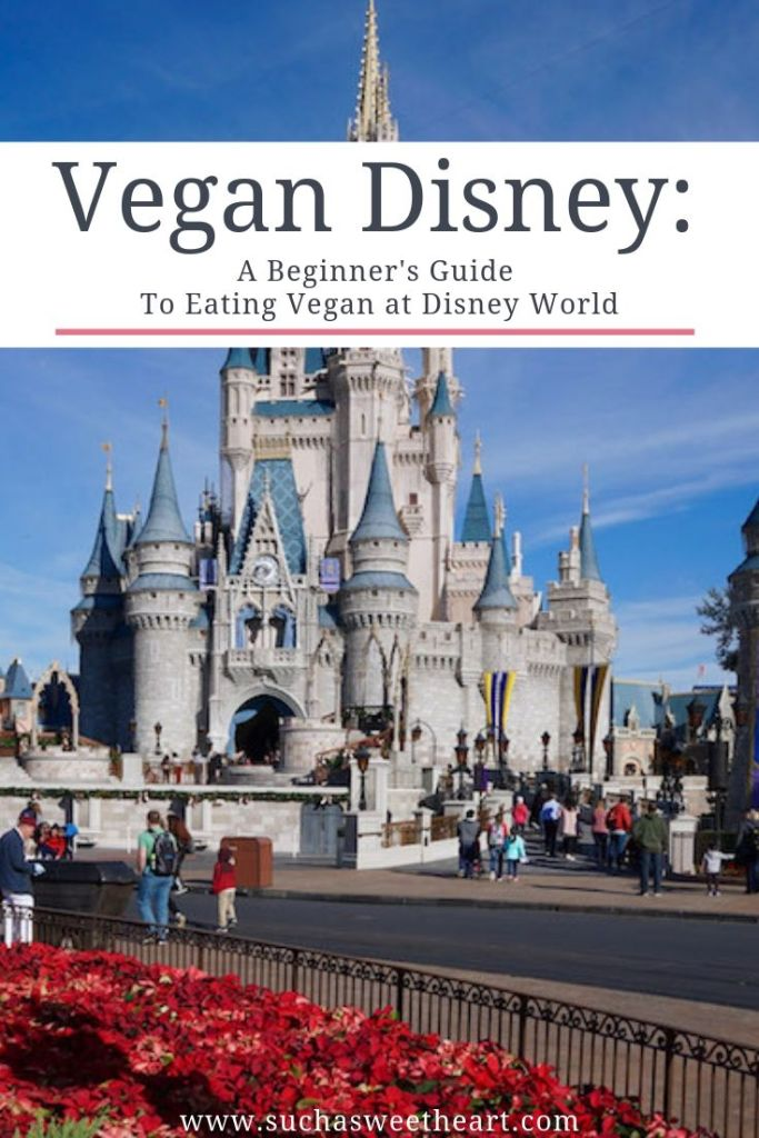 Eating Vegan at Disney World in front of Cinderella's castle.