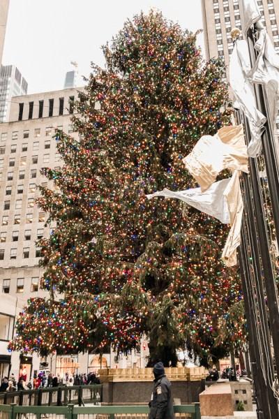 Christmas tree at Rockefeller Center.