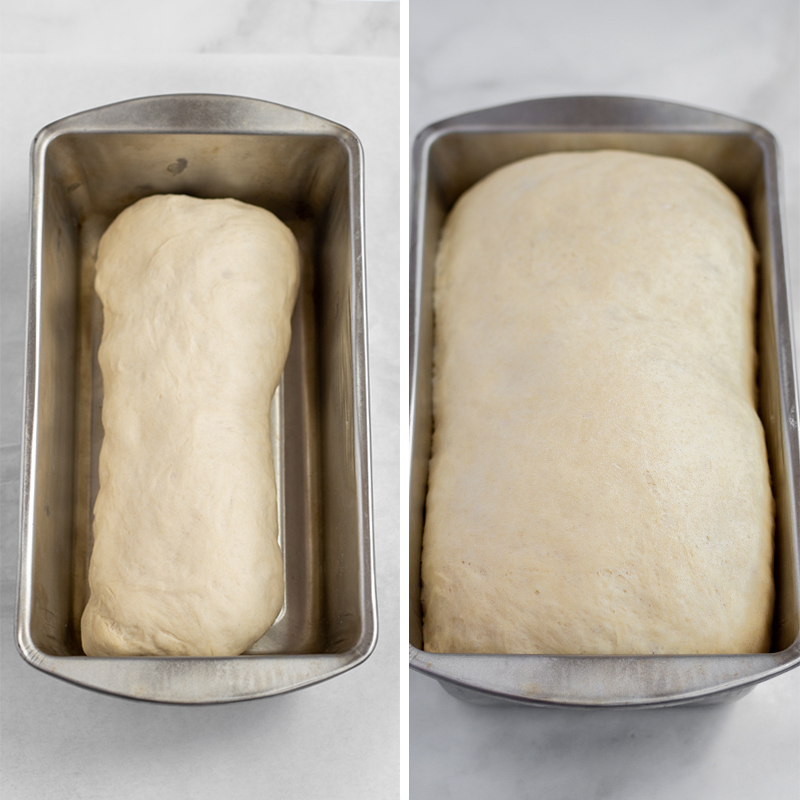White dough loaf doubling in size.