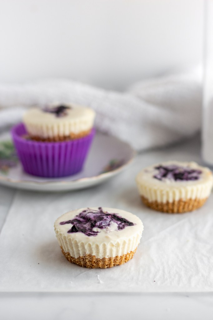 Blueberry Cheesecake Bites on a white surface.