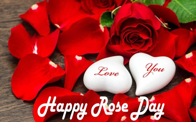 happy rose day 2021 images hd download wishes
