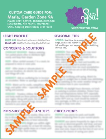 Custom Care Guides
