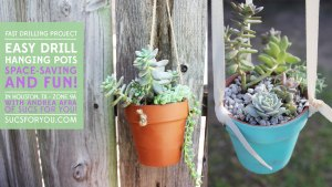 Succulents drilling pots for hanging