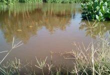 """Photo of بالصور .. """"النيل"""" يفيض في """"الولاية الشمالية"""" وسط استغاثات السكان وخسائر في ممتلكاتهم"""