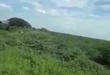 Photo of بالفيديو.. لـ 10 سنوات لن يجوع أهل السودان
