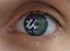 Oeil de SUD