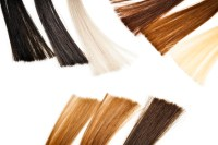Hair Color  Whats Attractive To You? - Suddenly Solo