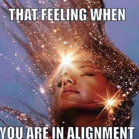 Best Law Of Attraction Memes