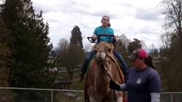 zoo-camel ride