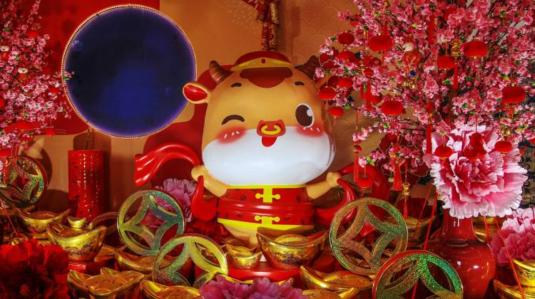 Year of Ox, Chinese Lunar Year