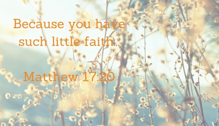 Because you havesuch little faith...Matthew 17-20 (1)