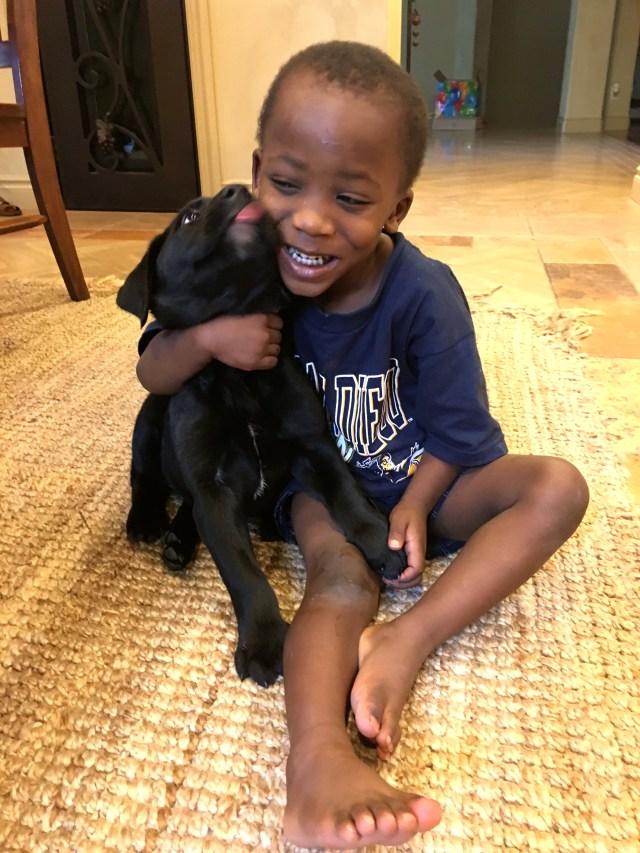 #puppy #todder #motherhood #parenting #tipsparenting #mumlife #mom #dad