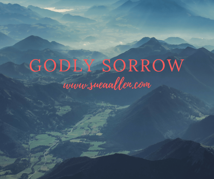 What is Godly Sorrow