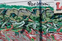 My DTLA (downtown Los Angeles) (12)