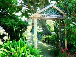 South Coast Botanic (25)