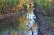 San Joaquin Wildlife Sanctuary (2)