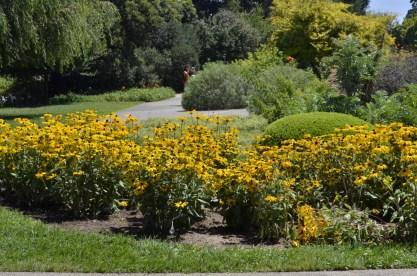 Huntington's Garden Colors (9)