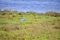 Beach ball #2