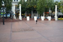 Portland Sights, part 1 (8)